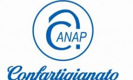 Il Governo dia segnali concreti: basta pensioni da fame»    intervento di Armando Bonelli presidente proviciale ANAP (Associazione Nazionale Pensionati) Confartigianato