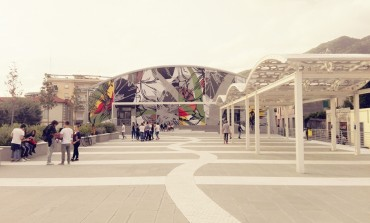 Massa: Piazza dei Narcisi 'rifiorisce' di colori